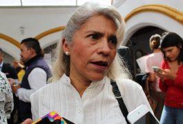 MARÍA del Carmen Martínez, preside la comisión de la Salud en el Pueblo Mágico.